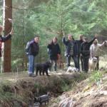 Hundwandern im Harz