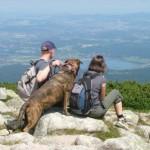 Hundewandern im Riesengebirge