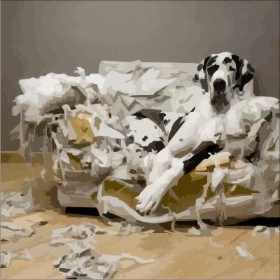Dogge auf zerlegtem Sofa