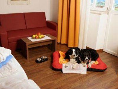 0032-03 Hotel Mair am Ort Zimmer mit Hundebett