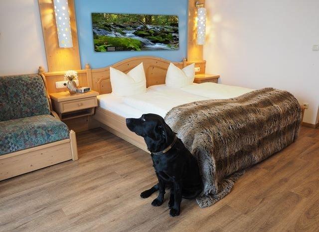 Doppelzimmer mit Haushund Drago