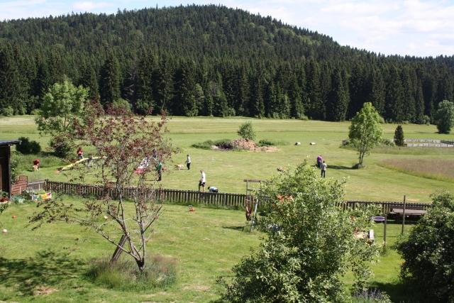 0044-10-Hotel-Baerenhof-Hundetraining