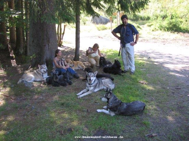0044-14-Hotel-Baerenhof-Hundegruppe