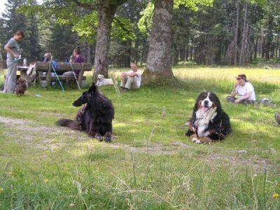 0044-15-Hotel-Baerenhof-Menschen-mit-Hunden-bei-der-Rast