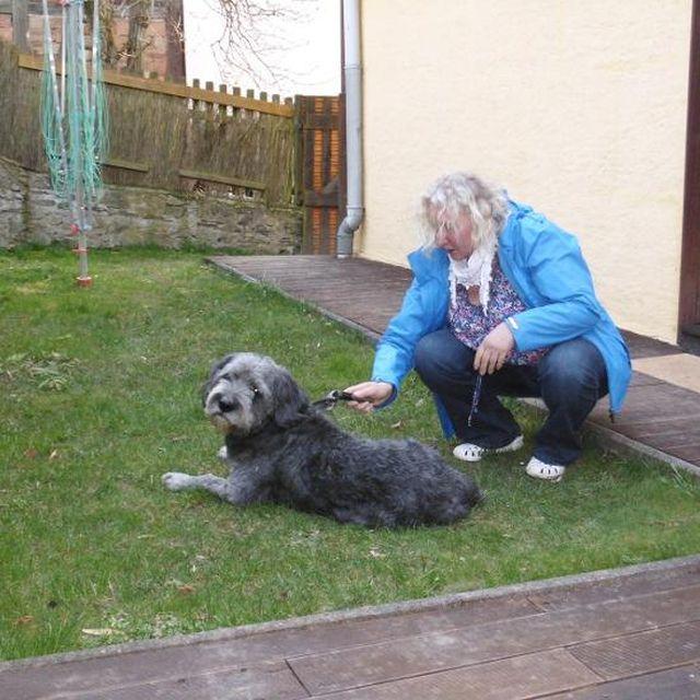 0109-05-Ferienhaus-Boehnke-Hund im Garten