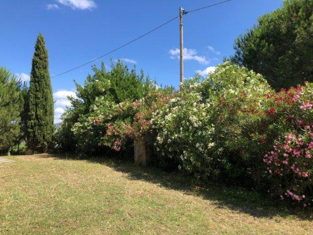 0133-02-Poderino-Poggetto-alla-Fonte-Garten