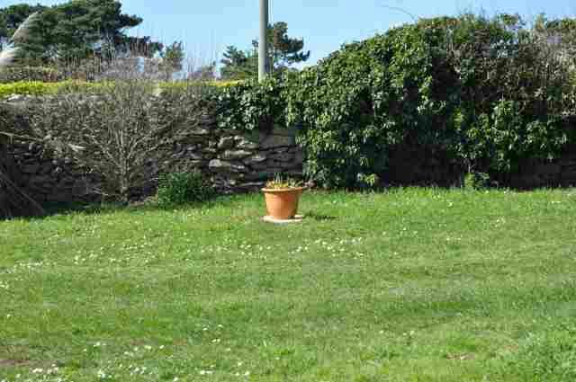 0214-04 Feha Kerblue Garten Bild 2