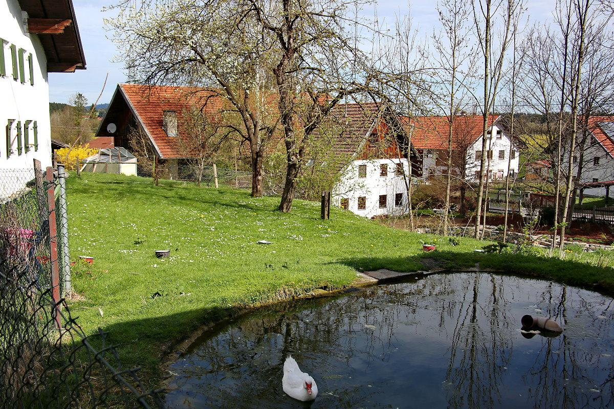 0240-04 Landhaus Anni Garten 03
