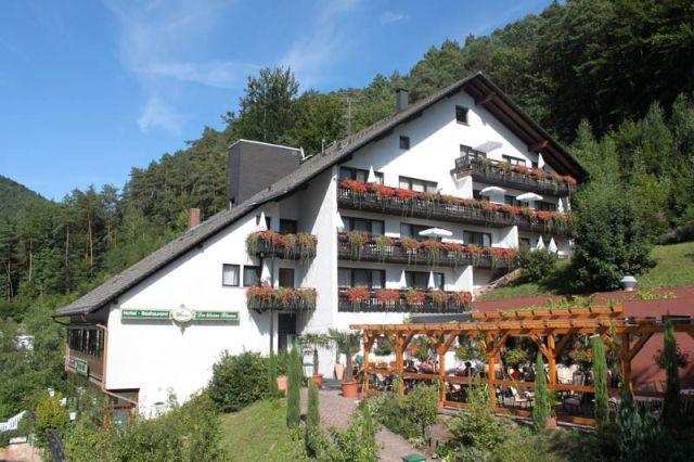 0246-01 Hotel Kleine Blume Haus mit Himmel