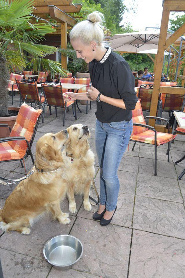 0246-02 Hotel Kleine Blume Hunde auf der Terrasse