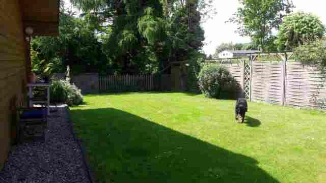 0260-04 Haus Seestern Garten mit Hund