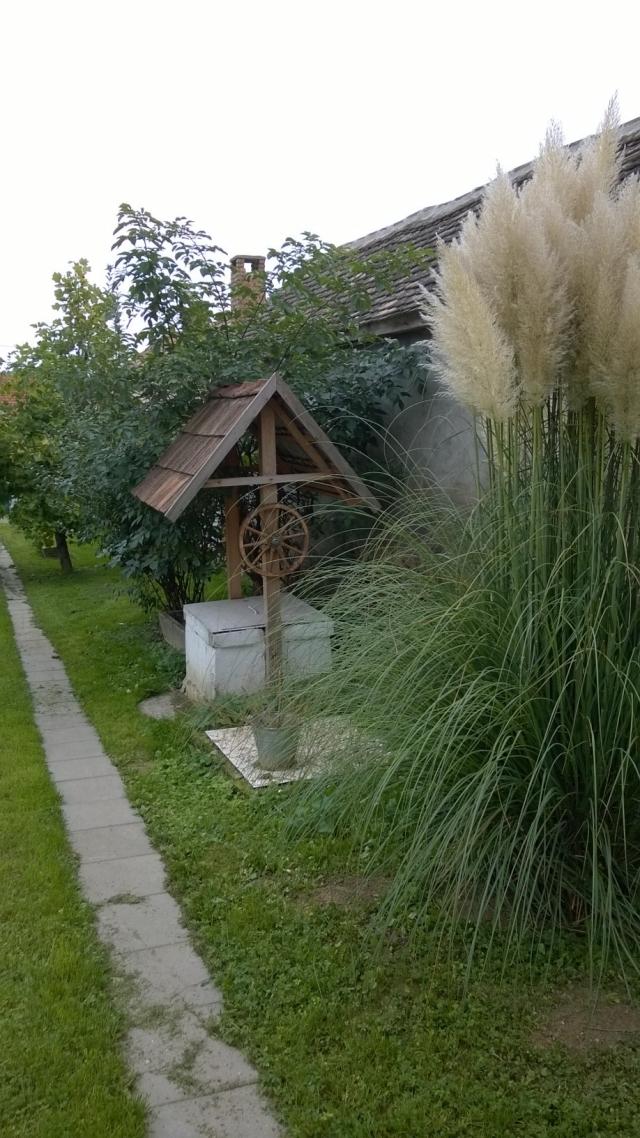 0310-04 Ferienhaus Haas Garten Bild 3