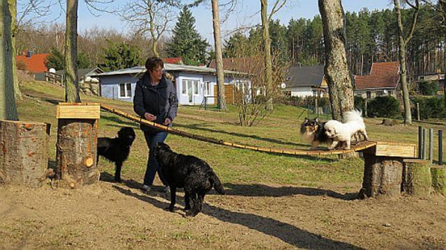 0316-04 Amys Wohlfuehlvilla Hundespielwiese