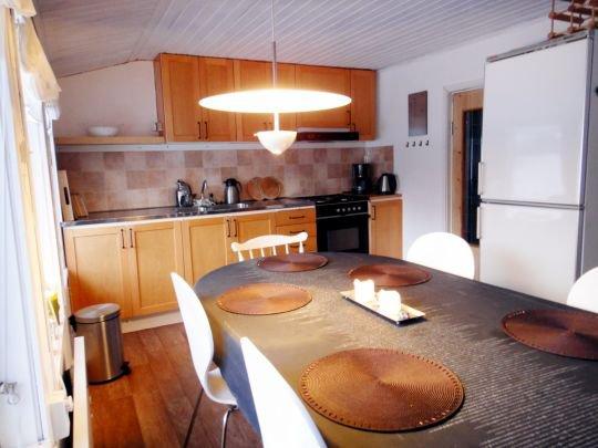 0395-07-Schwarzes Sommerhaus-Küche