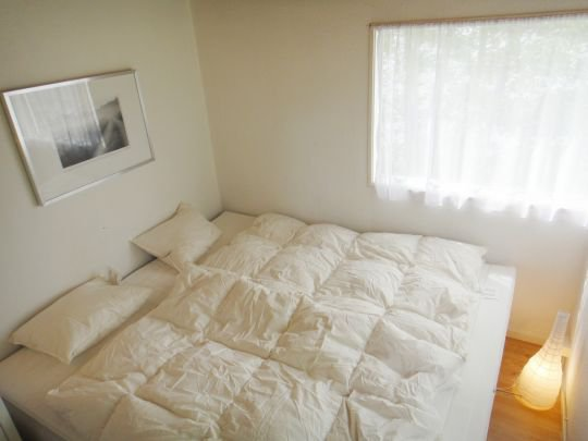 0395-09-Schwarzes-Sommerhaus-Schalfzimmer