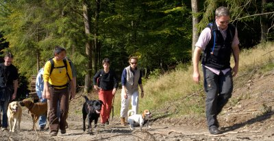 W 004-04 Hundewandern Bergauf