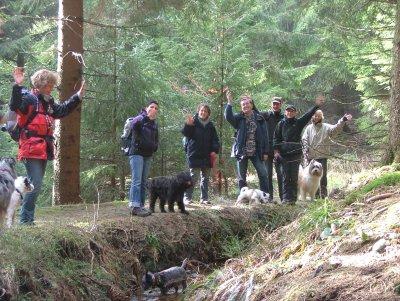 W 004-05 Hundewandern im Harz