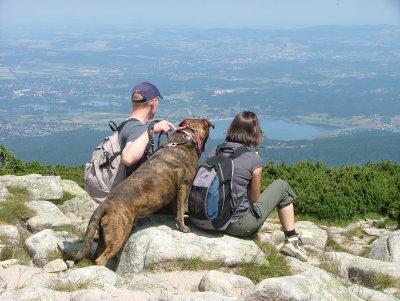 W 004-06 Hundewandern im Riesengebirge