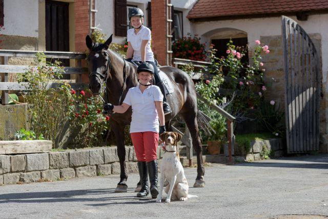 0008-14 Gut Feuerschwendt Reiturlaub mit Hund