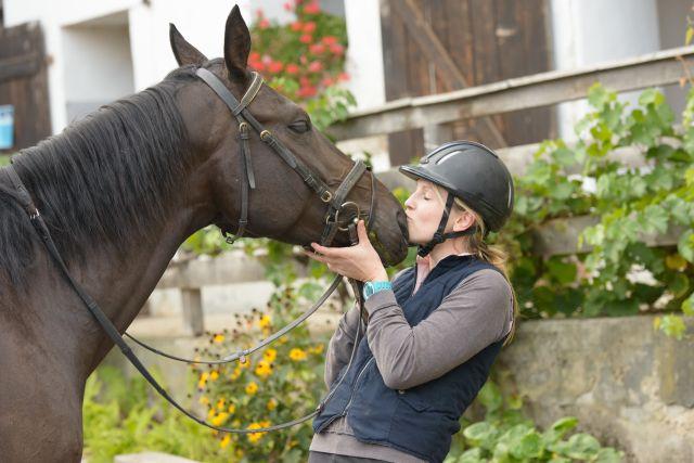0008-15 Gut Feuerschwendt Rottaler Pferd
