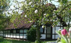 0301-06 Feriendorf Altes Land Deichgraf 86
