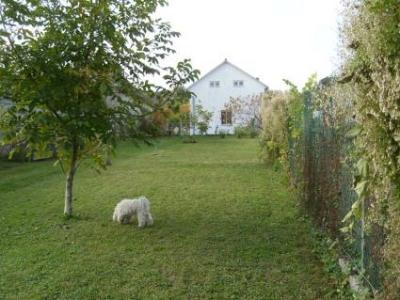 0310-01 Ferienhaus Haas mit Garten