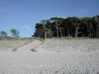 0336-02 Fewo Brettschneider Strandaufgang
