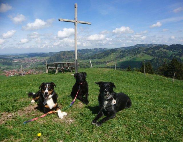 0410-06 Gaestehaus Christl Cranz unsere Drei
