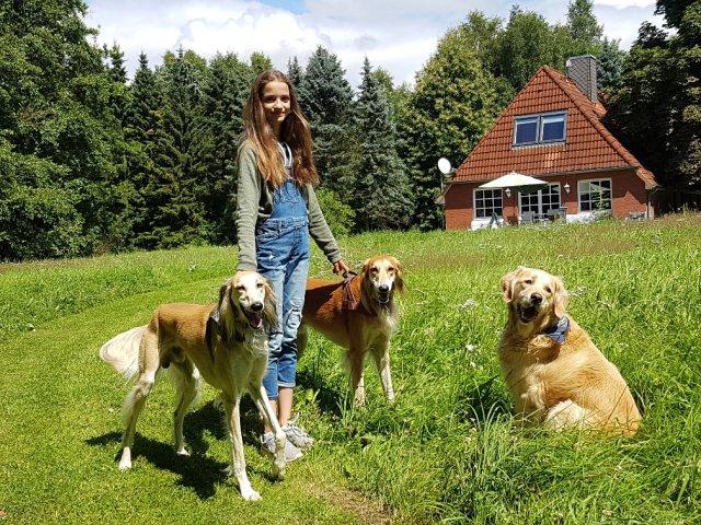 0427-02-Ferienhaus-Glasau-Gartenansicht mit Hunden