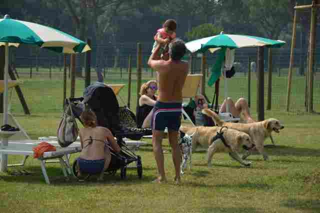 0450-11-Spiaggia-Romea-Liegewiese-mit-Hund