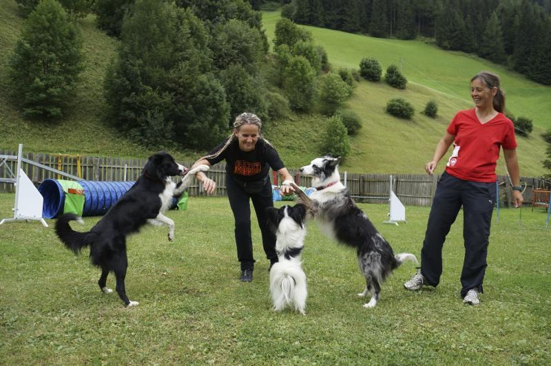 0486-05 Hundehotel Sonja Mensch und Hund beim Training