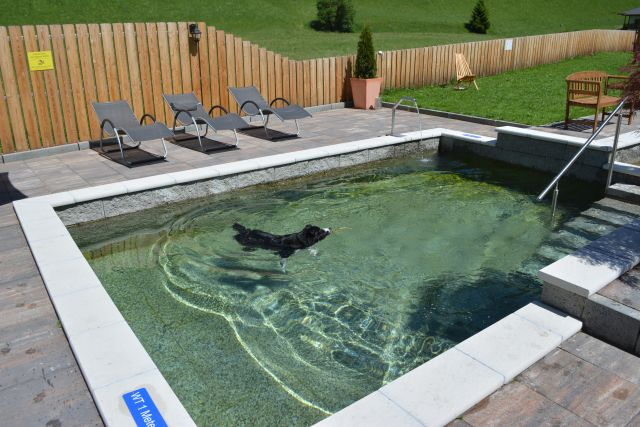 0486-06-Hundehotel-Sonja-Garten-mit-Teich