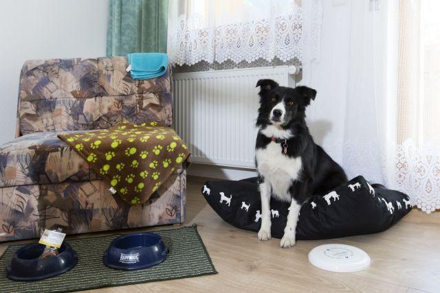 0486-11-Hundehotel-Sonja-DZ-mit-Hund