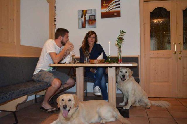 0486-13-Hundehotel-Sonja-Restaurant-mit-Hund