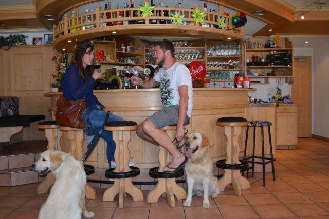 0486-15-Hundehotel-Sonja-Bar
