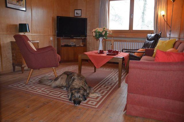 0488-08-Ferienhaus-Angela-Fernsehzimmer