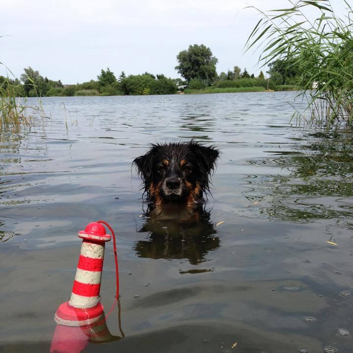 11. Platz: Herr Schröder im Oortkatener See