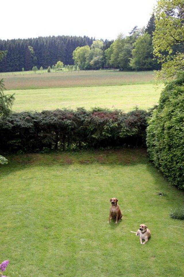 0530-02 Ferienwohnungen Solling Lounge I und II Hunde im Garten
