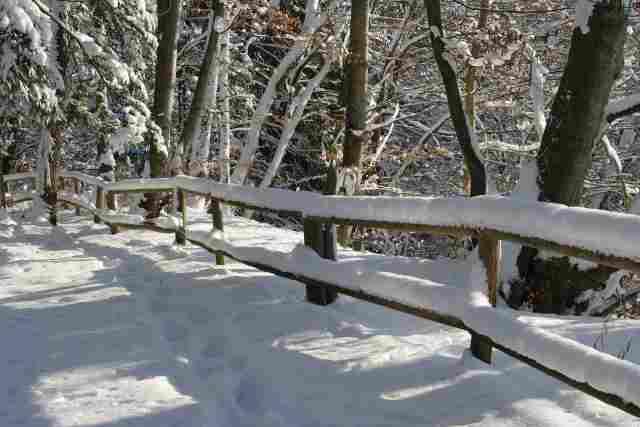 0538-12-Waldgasthof-Buchenhain-Winterimpression