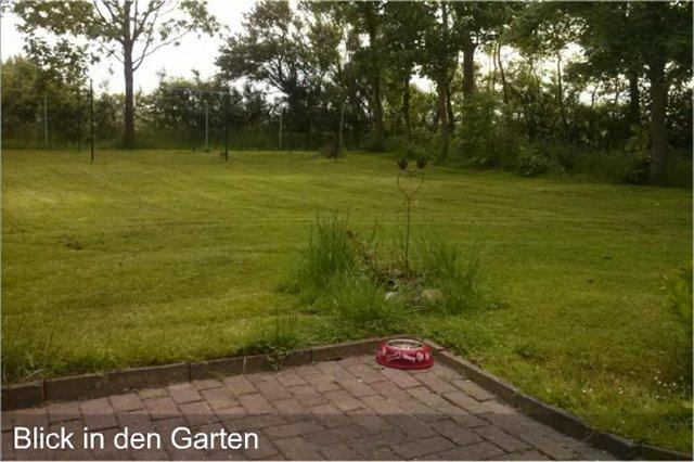 0550-04 Ferienhaus Huus op land Garten Bild 2