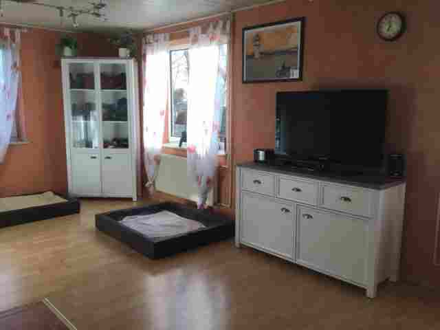 0550-07-Ferienhaus-Huus-op-land-Hundeschlafplaetze-im-Wohnraum