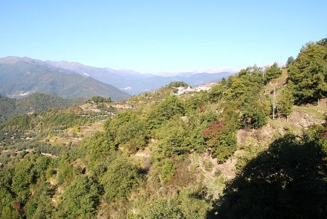0568-01-Ferienwohnungen-Casa-Capinera-Ausblick-in-die-Natur-Bild-1
