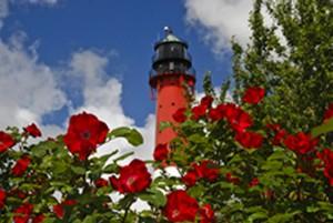 Blogbeitrag Pellworm Leuchtturm mit Rosen