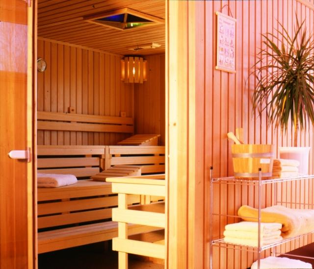 0588-08 Ferienpark Mecklenburg Sauna