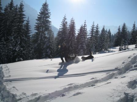 w006 Winter3