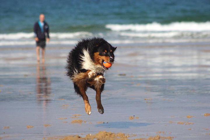 05 Gaby Küster Josh beim Luftsprung mit einem Ball in Frankreich am Meer