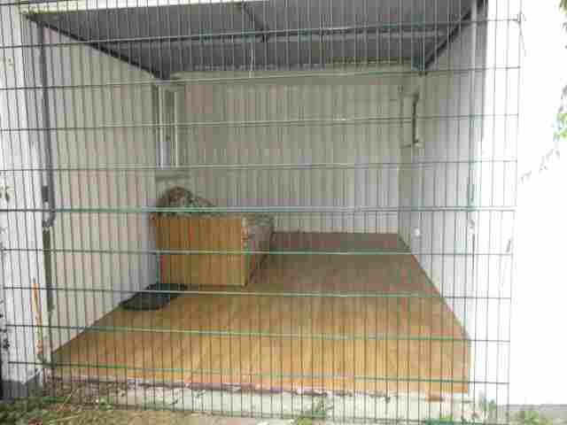 0602-13 Ferienhaus Zamperl Separates Hundezimmer