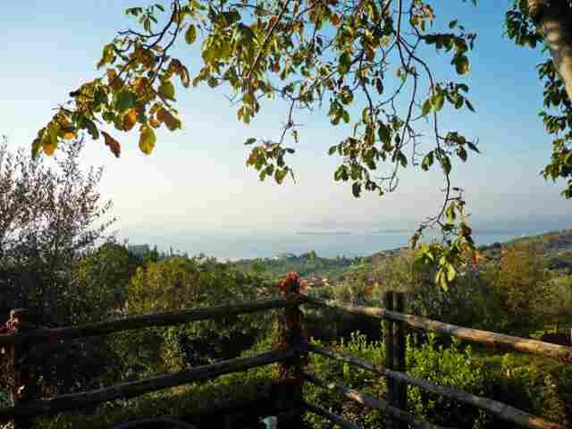0607-11 Ferienhaus Castagneto Blick auf den Garten