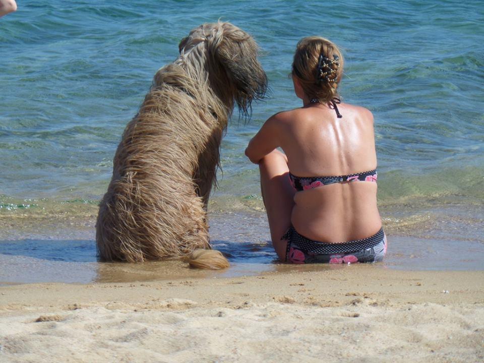 4. Platz: Angis Hobbys - Frauchen und Lenno am Strand auf Sardinien