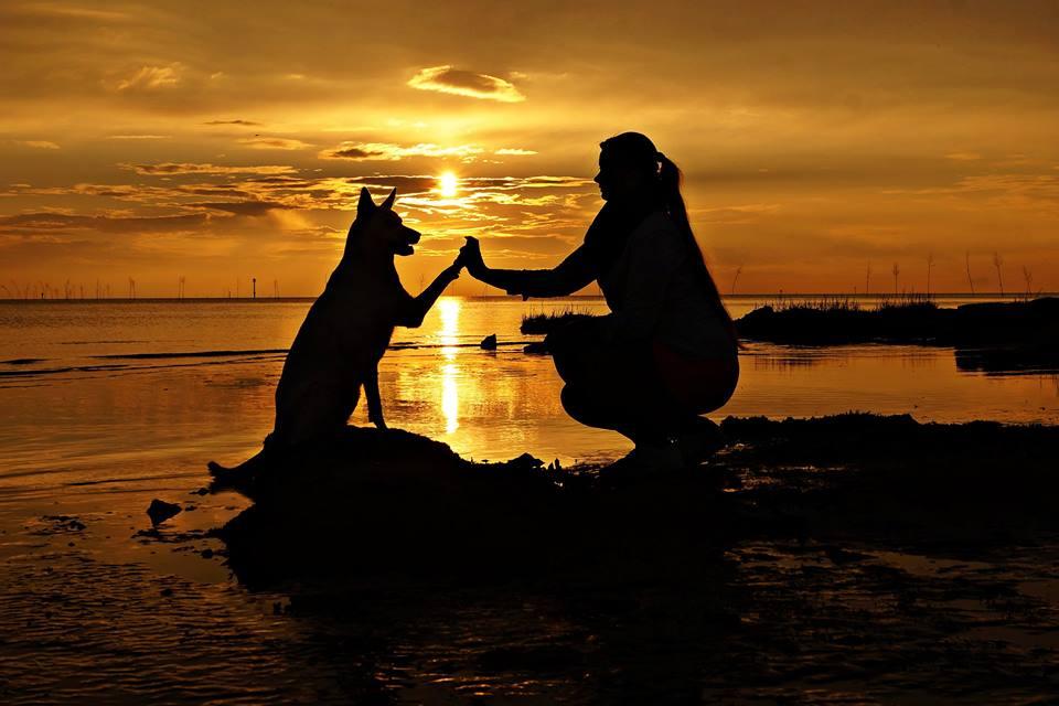 12. Platz: Alexandra Kiss - Kelly und Frauchen beim Sonnenuntergang am Nordseestrand bei Wremen